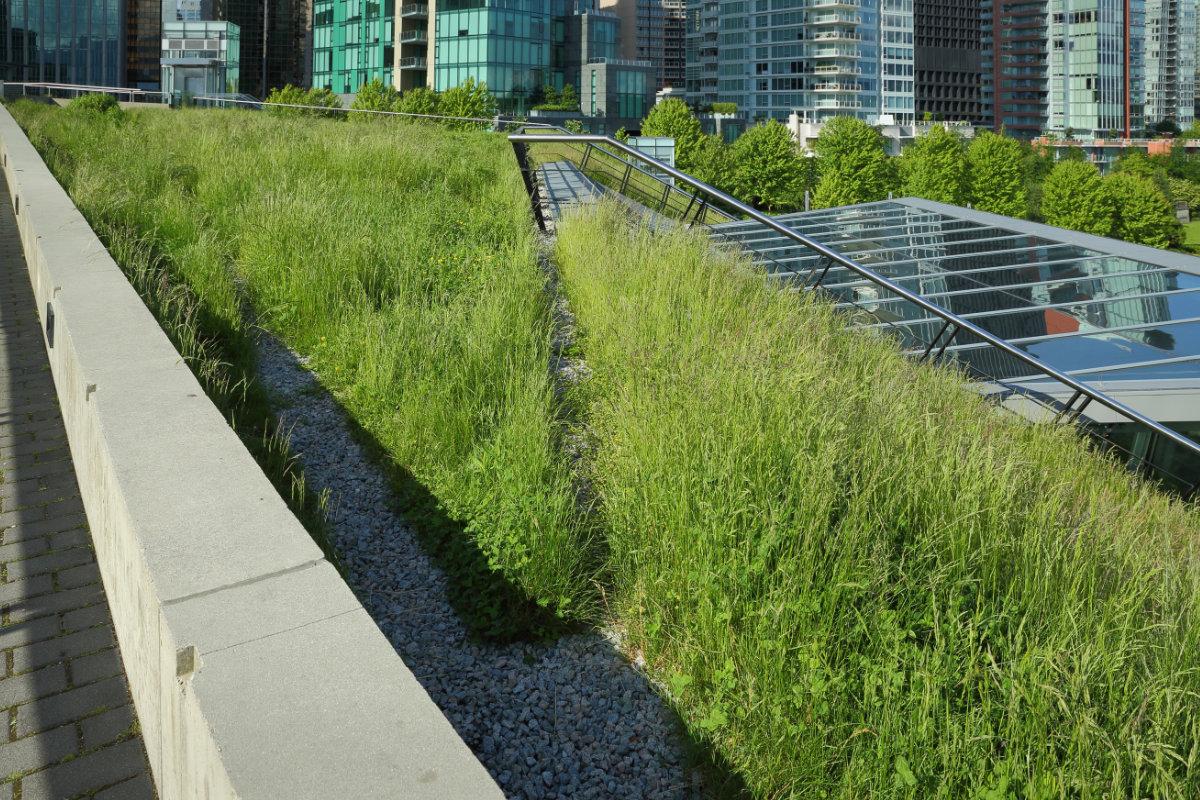 groendak plaatsen met gras